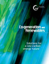 Co-generation and Renewables